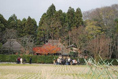 京都・嵯峨野,城崎温泉 083.jpg