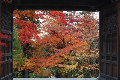 京都・嵯峨野,城崎温泉 107.jpg
