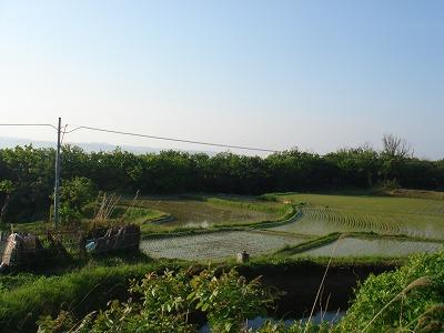 佐渡ロングライド2008 032.jpg