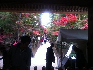 平林寺2.jpg